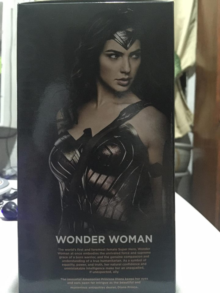 BVS_Wonder_Woman_Description